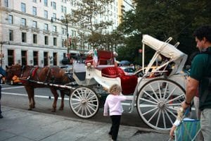 Central Park Carriage Ride Price
