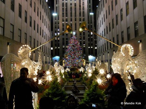 nyc holiday lights motorcoach sightseeing tour - Things To Do In Nyc During Christmas