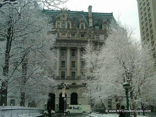 New York City Events December 2017 | Rockefeller Tree, Activities