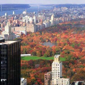 New York City Events October 2015