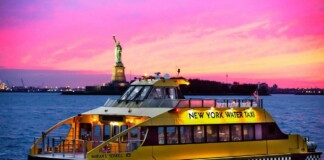 New York Water Taxi Night