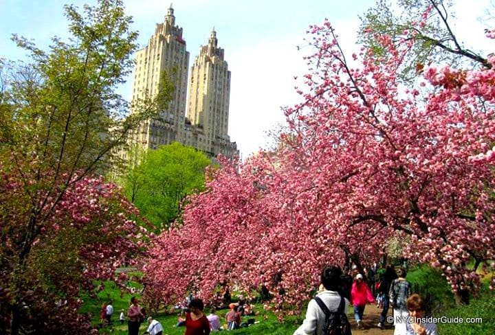 May Calendar New York City : New york city events may calendar what s on