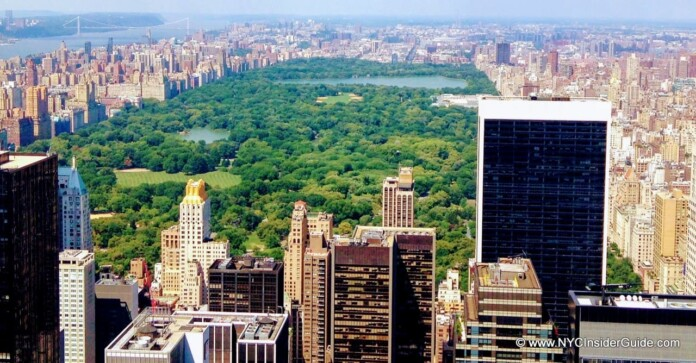 New York City Events August