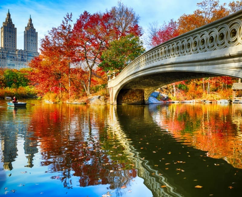 Top 50 Must-Do New York City Events October 2019 | Foliage