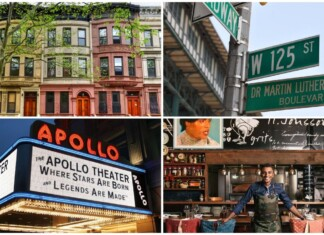Harlem Neighborhood Guide